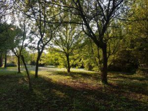 Parco_primo_Maggio